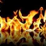 Биржи Binance и KuCoin вновь «сжигают» собственные токены