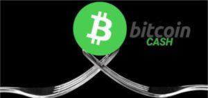 В преддверии хардфорка курс Bitcoin Cash вырос на 25%