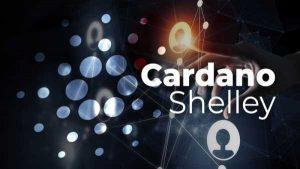 Cardano [ADA] полностью переходит под управление пулами